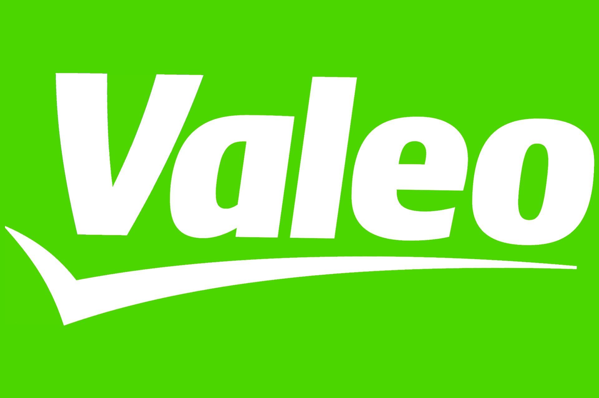 ЭБУ Sagem/Valeo